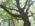 Exclue-2012_07-Centre_Bois